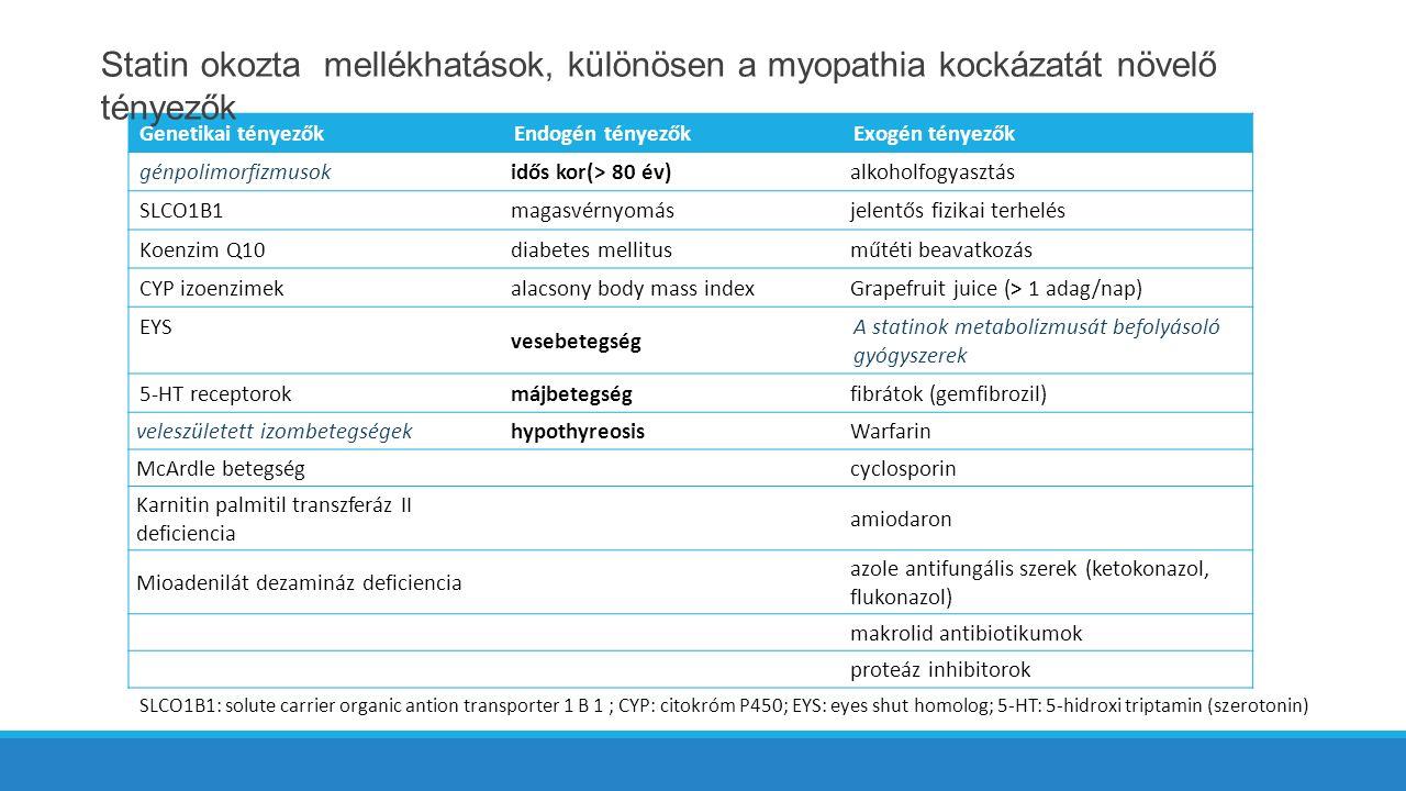 Genetikai tényezőkEndogén tényezőkExogén tényezők génpolimorfizmusok idős kor(> 80 év)alkoholfogyasztás SLCO1B1 magasvérnyomásjelentős fizikai terhelés Koenzim Q10 diabetes mellitusműtéti beavatkozás CYP izoenzimek alacsony body mass indexGrapefruit juice (> 1 adag/nap) EYS vesebetegség A statinok metabolizmusát befolyásoló gyógyszerek 5-HT receptorok májbetegségfibrátok (gemfibrozil) veleszületett izombetegségekhypothyreosisWarfarin McArdle betegségcyclosporin Karnitin palmitil transzferáz II deficiencia amiodaron Mioadenilát dezamináz deficiencia azole antifungális szerek (ketokonazol, flukonazol) makrolid antibiotikumok proteáz inhibitorok SLCO1B1: solute carrier organic antion transporter 1 B 1 ; CYP: citokróm P450; EYS: eyes shut homolog; 5-HT: 5-hidroxi triptamin (szerotonin) Statin okozta mellékhatások, különösen a myopathia kockázatát növelő tényezők