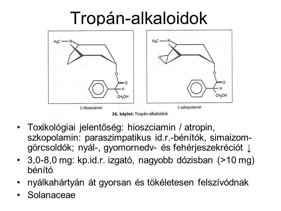Tropán-alkaloidok Toxikológiai jelentőség: hioszciamin / atropin, szkopolamin: paraszimpatikus id.r.-bénítók, simaizom- görcsoldók; nyál-, gyomornedv- és fehérjeszekréciót ↓ 3,0-8,0 mg: kp.id.r.