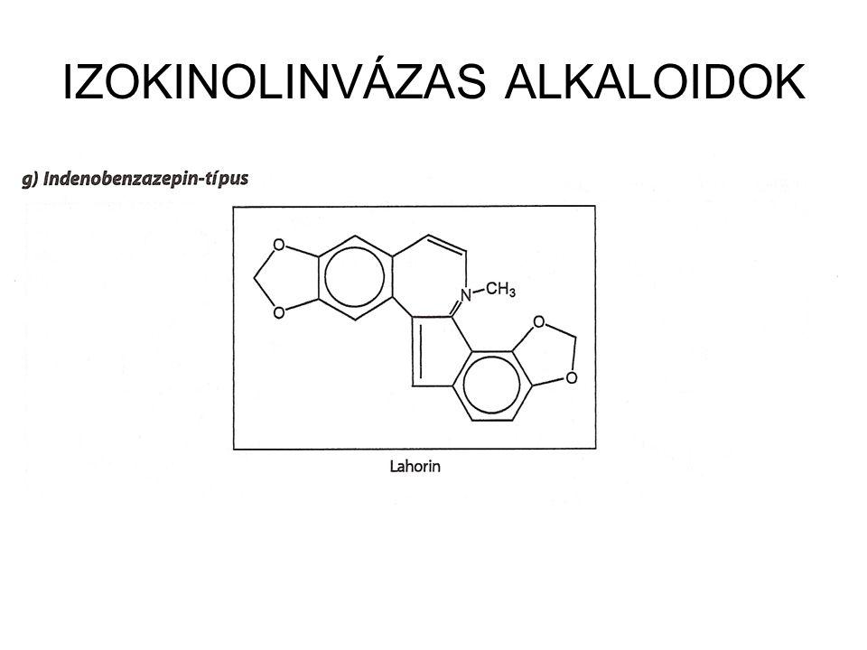 IZOKINOLINVÁZAS ALKALOIDOK