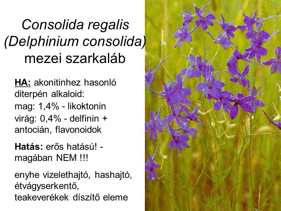 Consolida regalis (Delphinium consolida) mezei szarkaláb HA: akonitinhez hasonló diterpén alkaloid: mag: 1,4% - likoktonin virág: 0,4% - delfinin + antocián, flavonoidok Hatás: erős hatású.