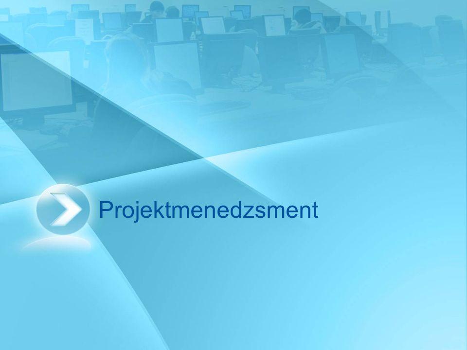 Projekt menedzser (PM) Felelős a teljes projektért, a projektben végzett munkáért, a kitűzött célok eléréséért.