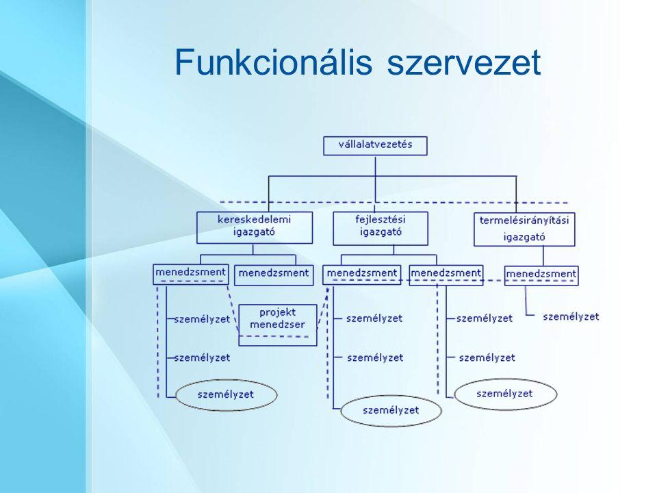 Funkcionális szervezet