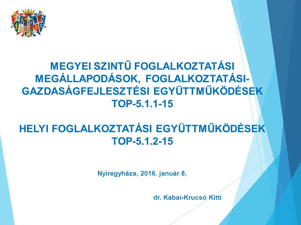 MEGYEI SZINTŰ FOGLALKOZTATÁSI MEGÁLLAPODÁSOK, FOGLALKOZTATÁSI- GAZDASÁGFEJLESZTÉSI EGYÜTTMŰKÖDÉSEK TOP-5.1.1-15 HELYI FOGLALKOZTATÁSI EGYÜTTMŰKÖDÉSEK TOP-5.1.2-15 Nyíregyháza, 2016.