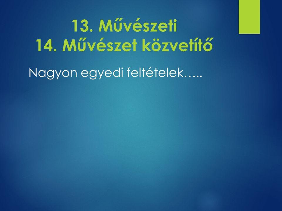 13. Művészeti 14. Művészet közvetítő Nagyon egyedi feltételek…..
