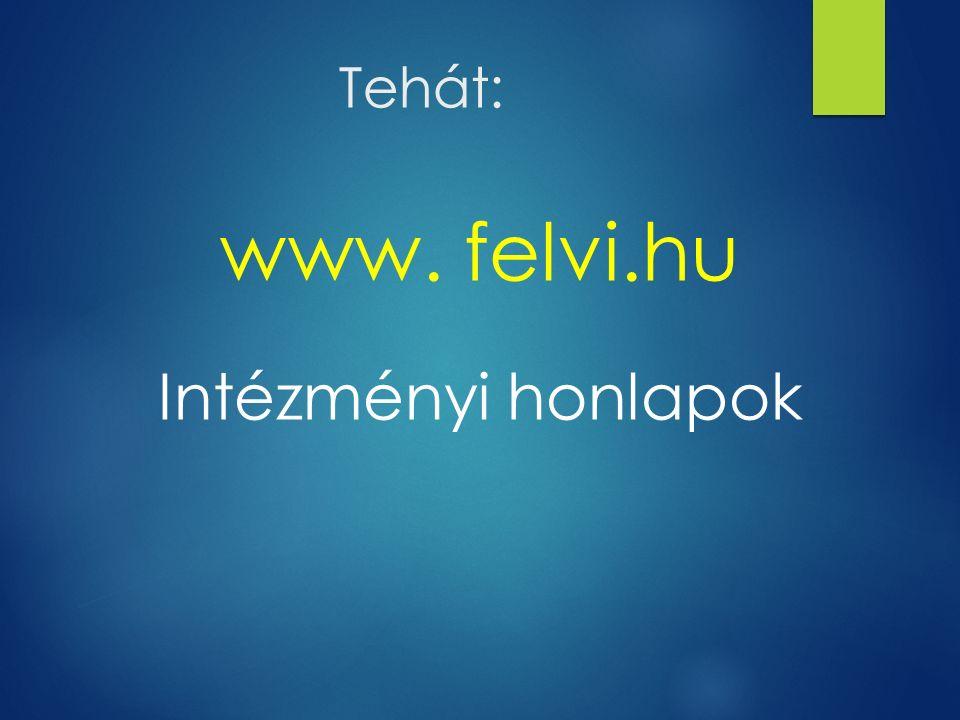 Tehát: www. felvi.hu Intézményi honlapok