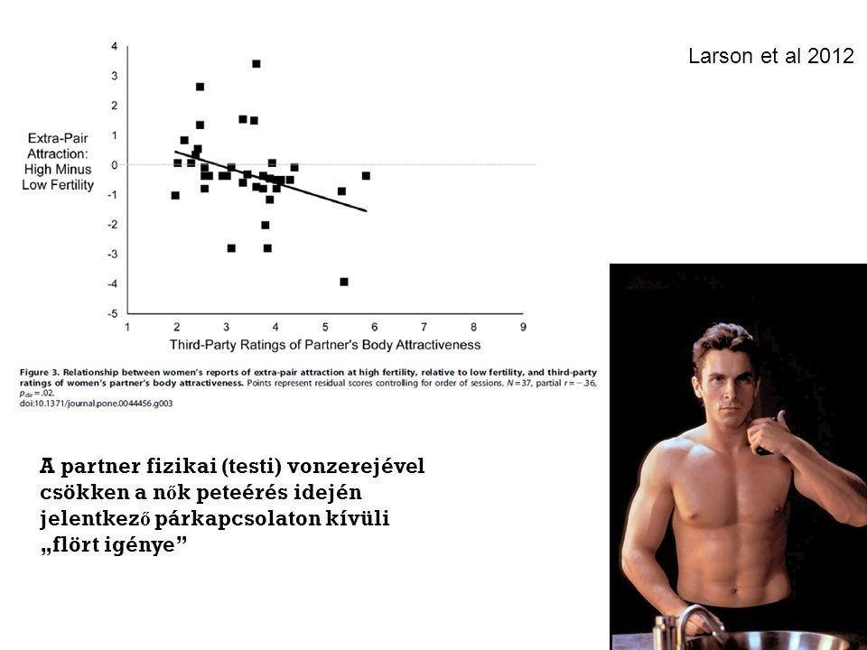 """A partner fizikai (testi) vonzerejével csökken a n ő k peteérés idején jelentkez ő párkapcsolaton kívüli """"flört igénye Larson et al 2012"""