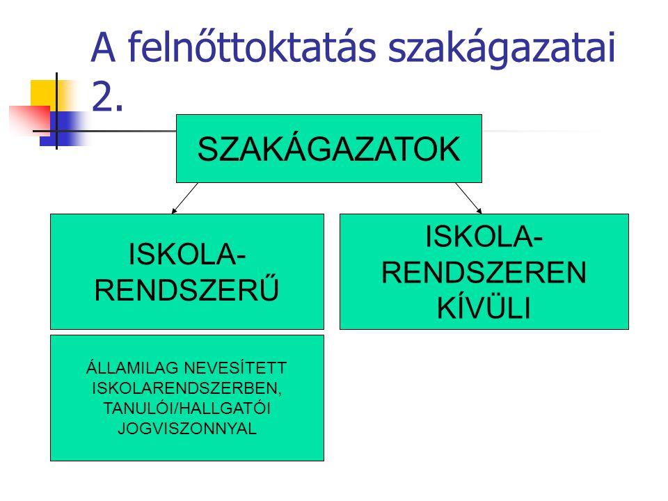 A felnőttoktatás szakágazatai 2.