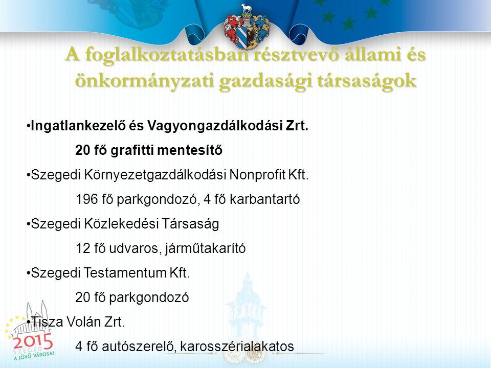 A foglalkoztatásban résztvevő intézmények Szegedi Kistérség Többcélú Társulása Humán Szolgáltató Központ 100 fő (gondozó, udvaros, portás) Egyesített Szociális Intézmény 20 fő (takarító, kertész, konyhai kisegítő) Oktatási Intézménye 15 fő (pedagógiai asszisztens, karbantartó) Szegedi Vadaspark 37 fő (erdésztechnikus, kertész, idegenvezető, jegyellenőr) Oktatási intézmények karbantartó, pedagógus, portás, dajka, gyermekfelügyelő