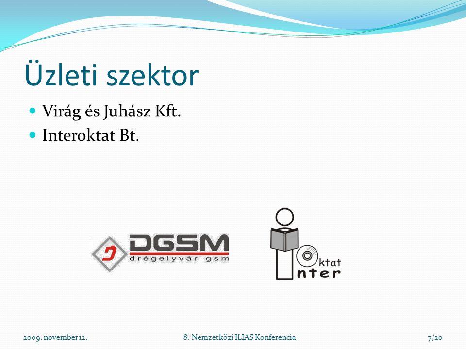 2009. november 12.8. Nemzetközi ILIAS Konferencia7/20 Üzleti szektor Virág és Juhász Kft.