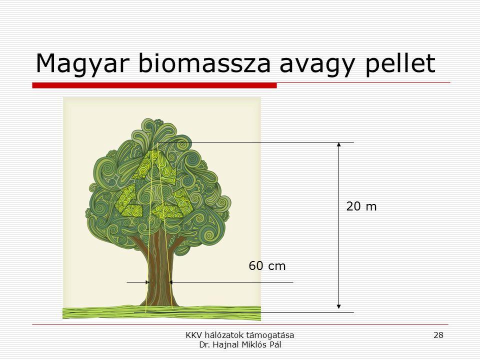 KKV hálózatok támogatása Dr. Hajnal Miklós Pál 28 Magyar biomassza avagy pellet 20 m 60 cm