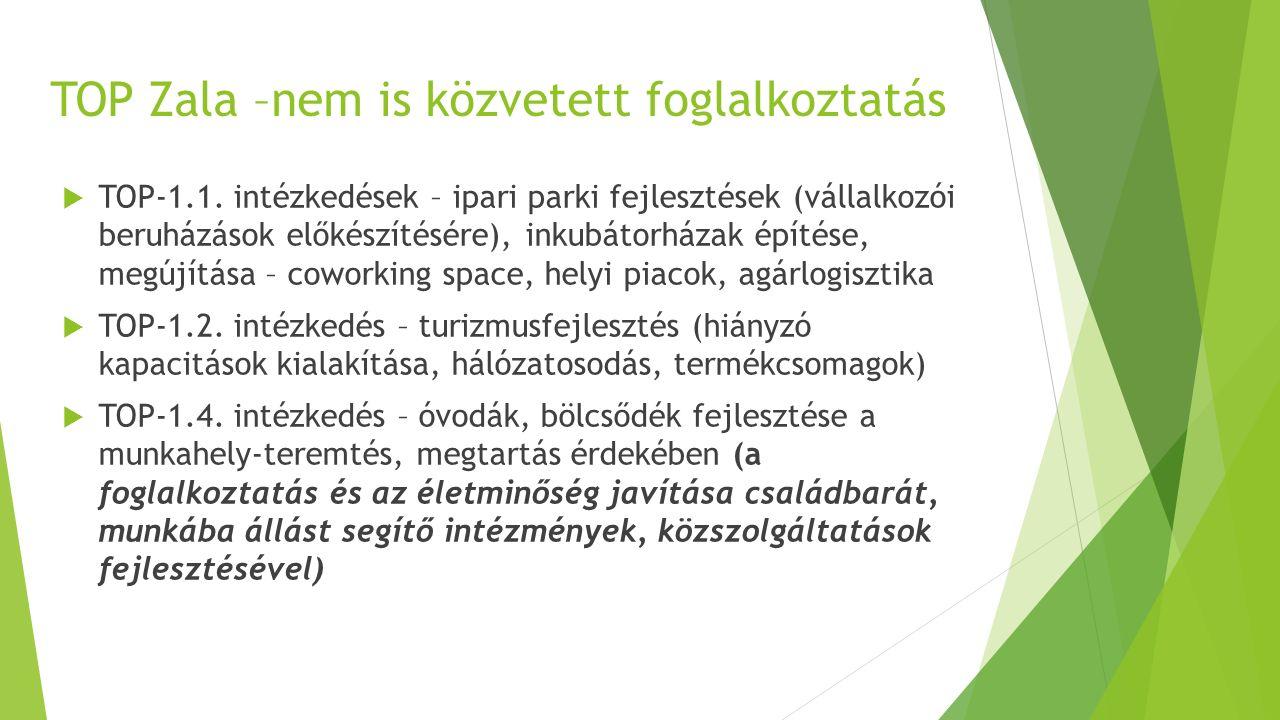 TOP Zala –nem is közvetett foglalkoztatás  TOP-1.1. intézkedések – ipari parki fejlesztések (vállalkozói beruházások előkészítésére), inkubátorházak