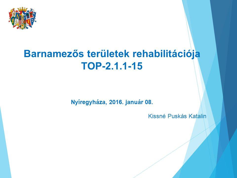 Barnamezős területek rehabilitációja TOP-2.1.1-15 Nyíregyháza, 2016.