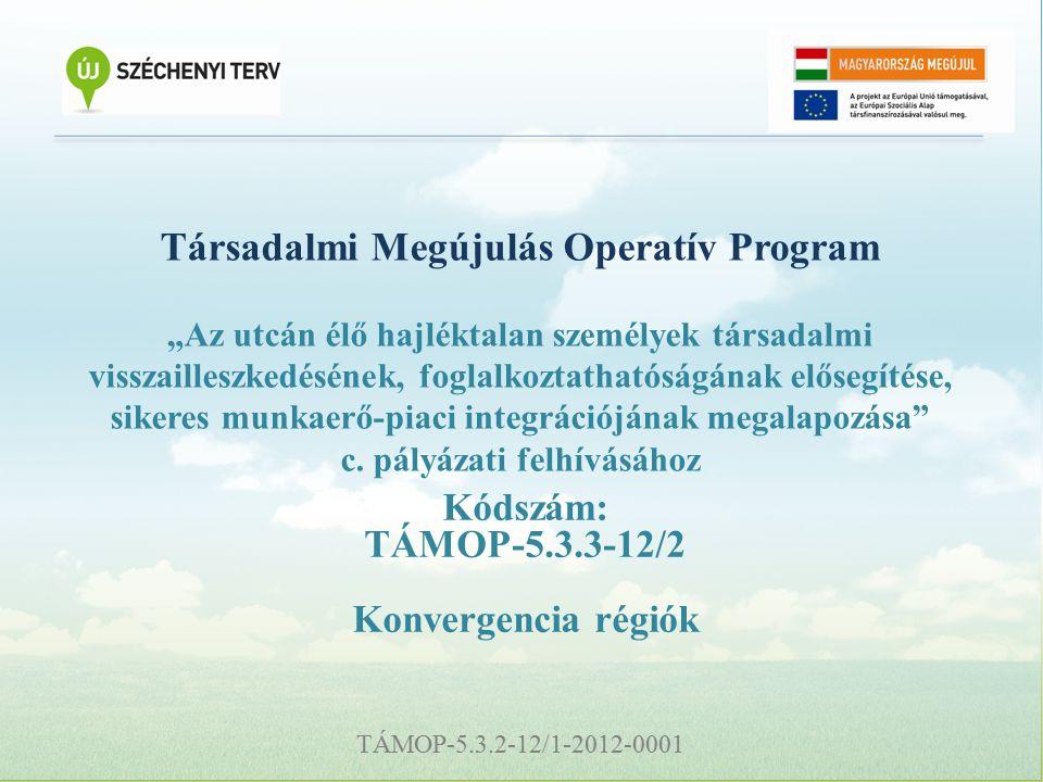 """TÁMOP-5.3.2-12/1-2012-0001 Társadalmi Megújulás Operatív Program """"Az utcán élő hajléktalan személyek társadalmi visszailleszkedésének, foglalkoztathatóságának elősegítése, sikeres munkaerő-piaci integrációjának megalapozása c."""