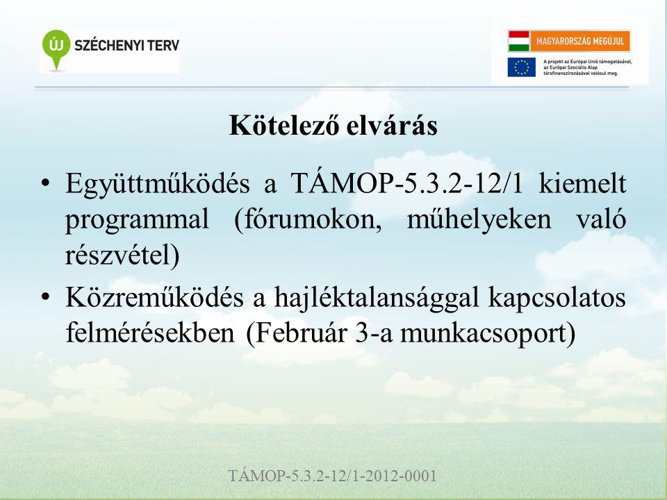 TÁMOP-5.3.2-12/1-2012-0001 Kötelező elvárás Együttműködés a TÁMOP-5.3.2-12/1 kiemelt programmal (fórumokon, műhelyeken való részvétel) Közreműködés a hajléktalansággal kapcsolatos felmérésekben (Február 3-a munkacsoport)