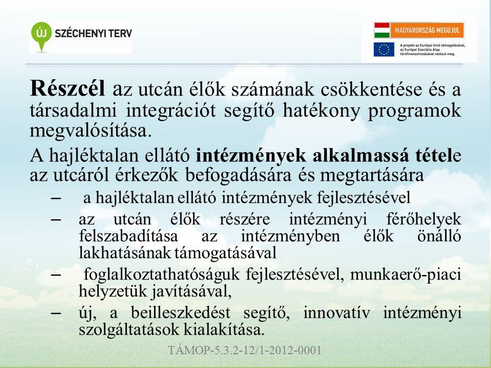TÁMOP-5.3.2-12/1-2012-0001 Részcél a z utcán élők számának csökkentése és a társadalmi integrációt segítő hatékony programok megvalósítása.