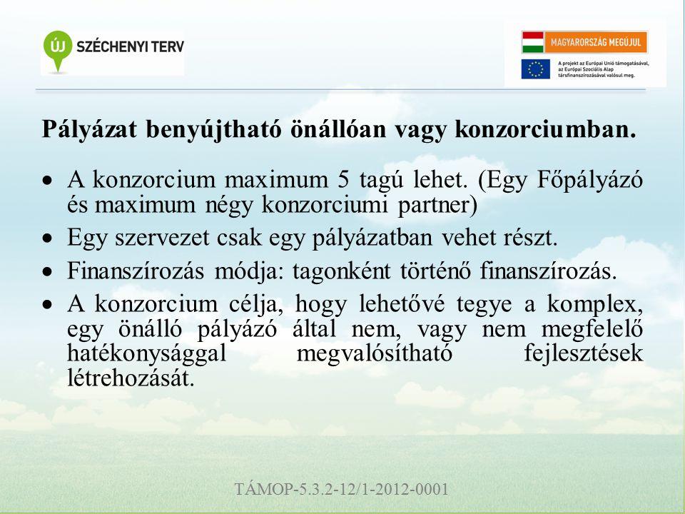 TÁMOP-5.3.2-12/1-2012-0001 Pályázat benyújtható önállóan vagy konzorciumban.