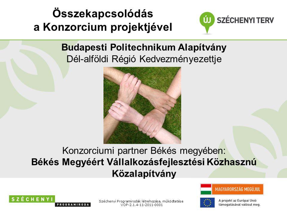 Monitoring mutatók Széchenyi Programirodák létrehozása, működtetése VOP-2.1.4-11-2011-0001 5 piaci kapcsolat kialakítása a projekt fizikai zárásáig; 500.000.-Ft nettó árbevétel az első üzleti évben.