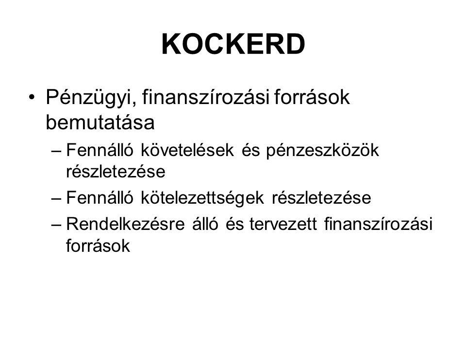 KOCKERD Pénzügyi, finanszírozási források bemutatása –Fennálló követelések és pénzeszközök részletezése –Fennálló kötelezettségek részletezése –Rendel