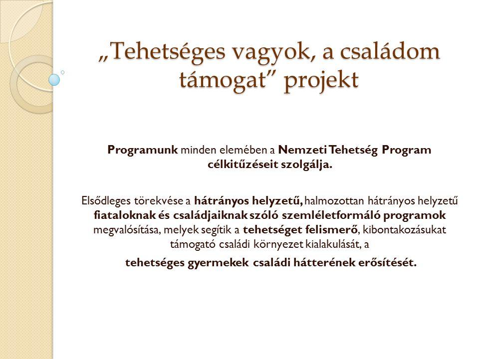 """""""Tehetséges vagyok, a családom támogat projekt Programunk minden elemében a Nemzeti Tehetség Program célkitűzéseit szolgálja."""