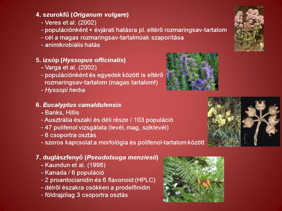 4. szurokfű (Origanum vulgare) - Veres et al. (2002) - populációnként + évjárati hatásra pl.