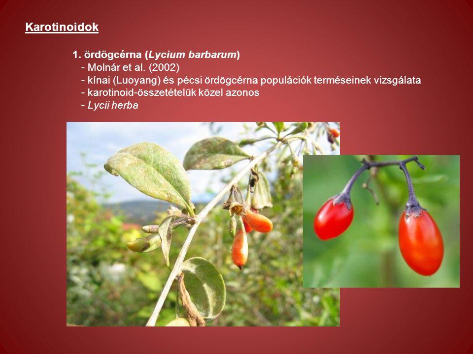 Karotinoidok 1. ördögcérna (Lycium barbarum) - Molnár et al.