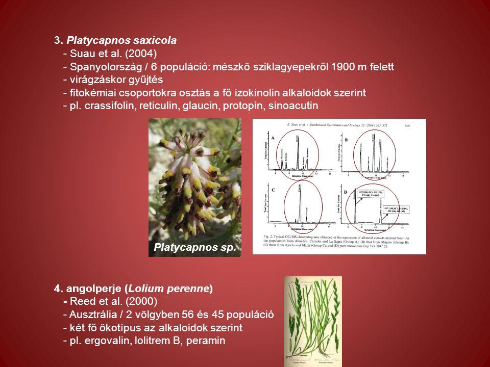 3. Platycapnos saxicola - Suau et al.
