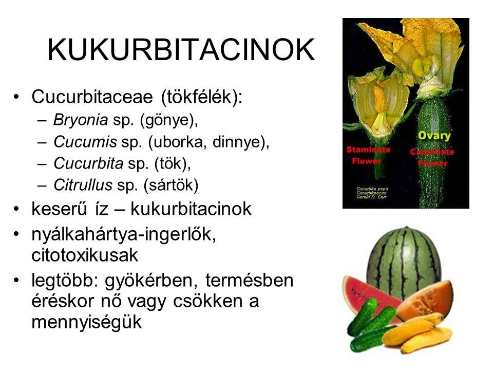 KUKURBITACINOK Cucurbitaceae (tökfélék): –Bryonia sp. (gönye), –Cucumis sp. (uborka, dinnye), –Cucurbita sp. (tök), –Citrullus sp. (sártök) keserű íz