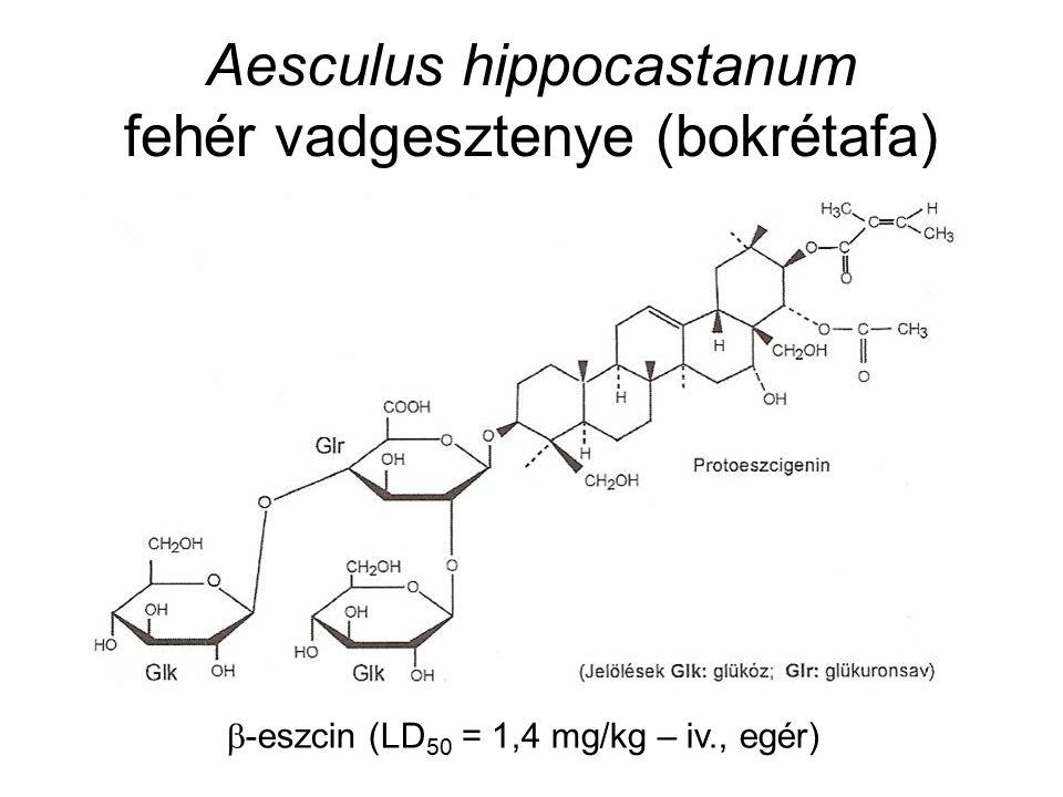 Aesculus hippocastanum fehér vadgesztenye (bokrétafa)  -eszcin (LD 50 = 1,4 mg/kg – iv., egér)