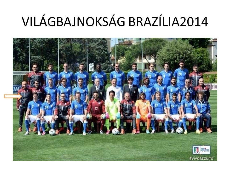 VILÁGBAJNOKSÁG BRAZÍLIA2014