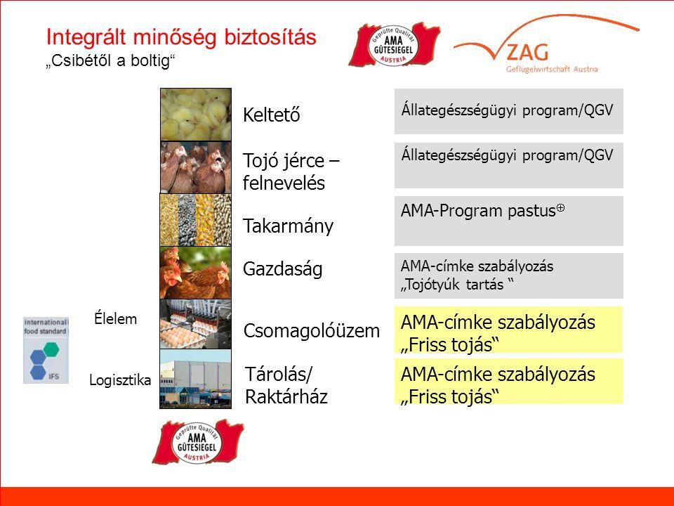 """Verteilerzentrum LEH Élelem Logisztika Keltető Takarmány Tojó jérce – felnevelés Gazdaság Tárolás/ Raktárház Csomagolóüzem Állategészségügyi program/QGV AMA-címke szabályozás """"Tojótyúk tartás AMA-címke szabályozás """"Friss tojás AMA-Program pastus  AMA-címke szabályozás """"Friss tojás Integrált minőség biztosítás """"Csibétől a boltig"""