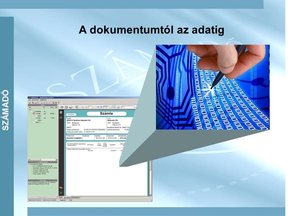 SZÁMADÓ A dokumentumtól az adatig