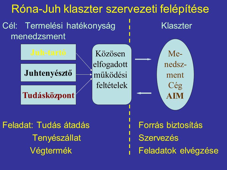 Róna-Juh klaszter szervezeti felépítése Cél: Termelési hatékonyság Klaszter menedzsment növelés Feladat: Tudás átadásForrás biztosítás TenyészállatSzervezés Végtermék Feladatok elvégzése Juh-tartó Juhtenyésztő Tudásközpont Közösen elfogadott működési feltételek Me- nedsz- ment Cég AIM