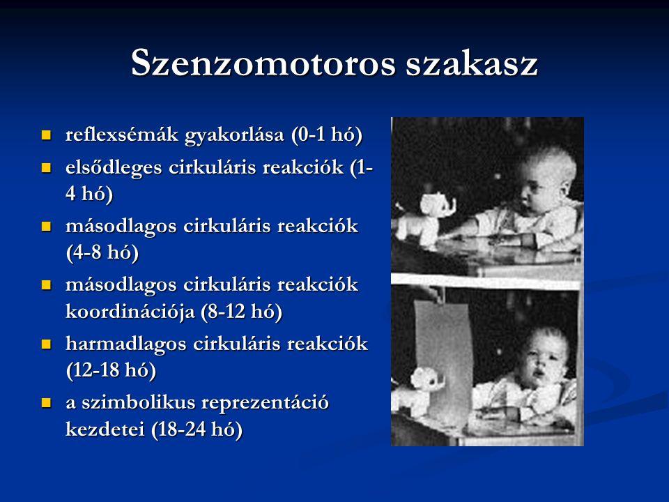 Az életkori szakaszok 0-2 év: érzékszervi-mozgásos (szenzomotoros) szakasz 0-2 év: érzékszervi-mozgásos (szenzomotoros) szakasz 2-7 év: műveletek előtti (preoperacionális szakasz) 2-7 év: műveletek előtti (preoperacionális szakasz) 7-12 év: konkrét műveletek szakasza 7-12 év: konkrét műveletek szakasza 12-17 év: formális műveletek szakasza 12-17 év: formális műveletek szakasza