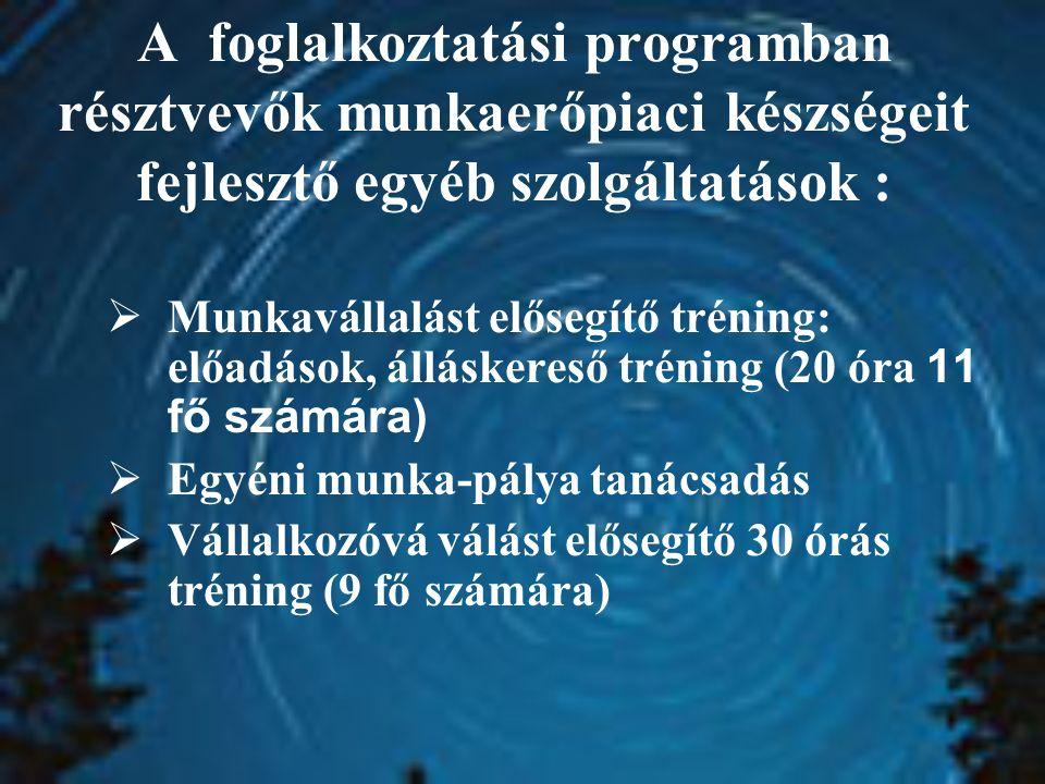 A foglalkoztatási programban résztvevők munkaerőpiaci készségeit fejlesztő egyéb szolgáltatások :  Munkavállalást elősegítő tréning: előadások, álláskereső tréning (20 óra 11 fő számára)  Egyéni munka-pálya tanácsadás  Vállalkozóvá válást elősegítő 30 órás tréning (9 fő számára)