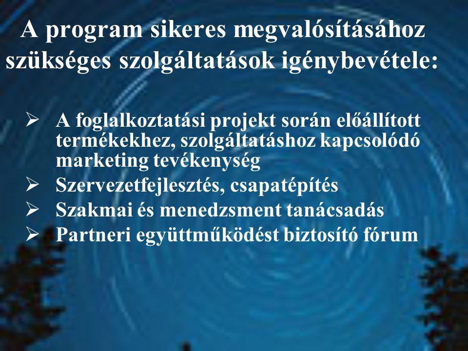 A program sikeres megvalósításához szükséges szolgáltatások igénybevétele:  A foglalkoztatási projekt során előállított termékekhez, szolgáltatáshoz kapcsolódó marketing tevékenység  Szervezetfejlesztés, csapatépítés  Szakmai és menedzsment tanácsadás  Partneri együttműködést biztosító fórum