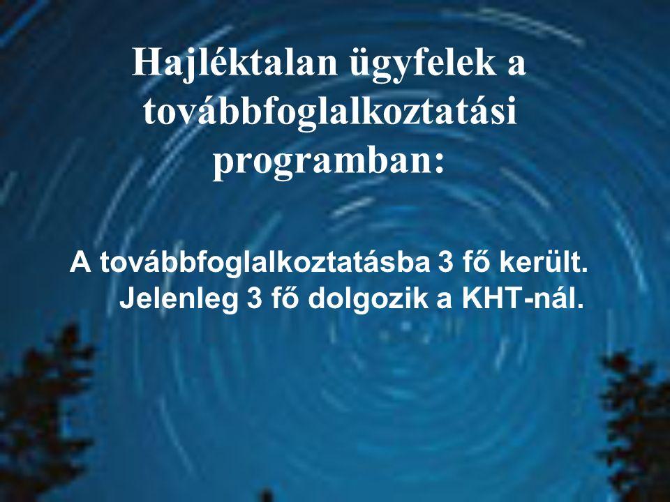 Hajléktalan ügyfelek a továbbfoglalkoztatási programban: A továbbfoglalkoztatásba 3 fő került. Jelenleg 3 fő dolgozik a KHT-nál.