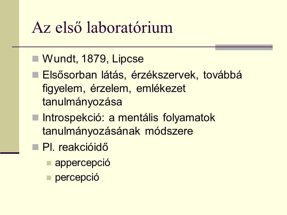 Az első laboratórium Wundt, 1879, Lipcse Elsősorban látás, érzékszervek, továbbá figyelem, érzelem, emlékezet tanulmányozása Introspekció: a mentális