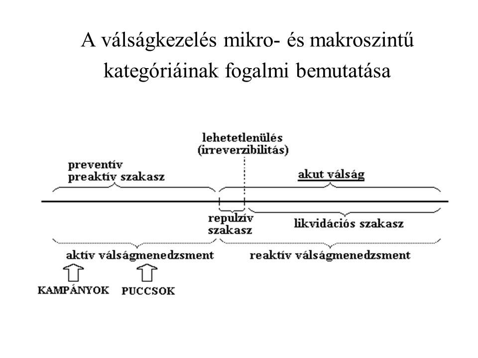 A válságkezelés mikro- és makroszintű kategóriáinak fogalmi bemutatása