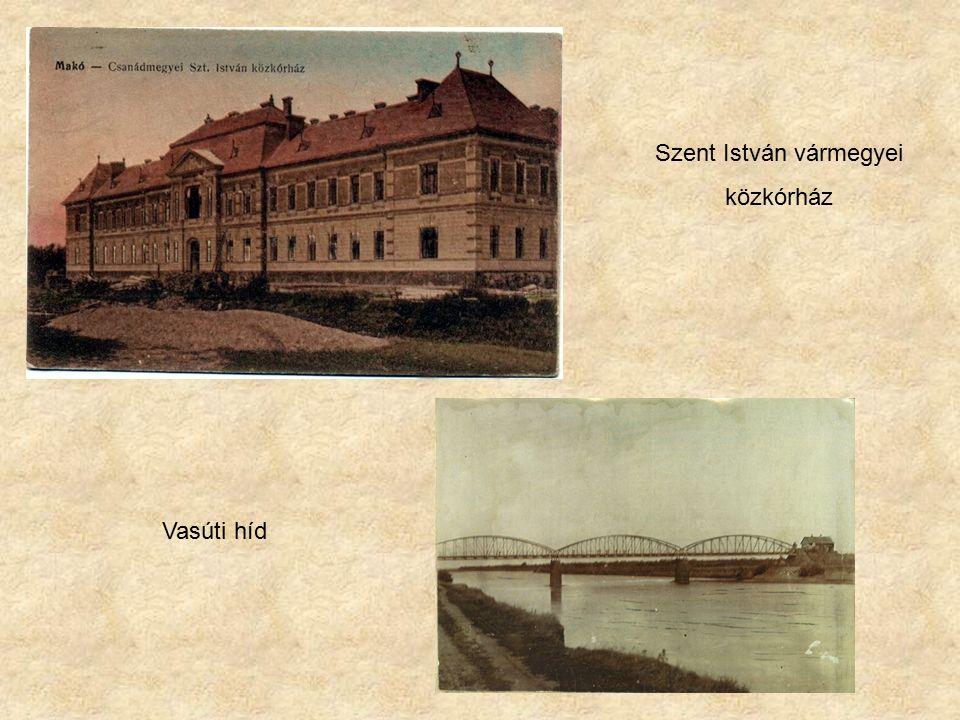 Szent István vármegyei közkórház Vasúti híd