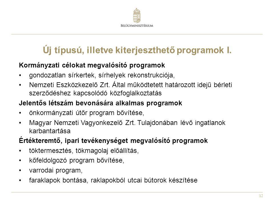 12 Új típusú, illetve kiterjeszthető programok I.