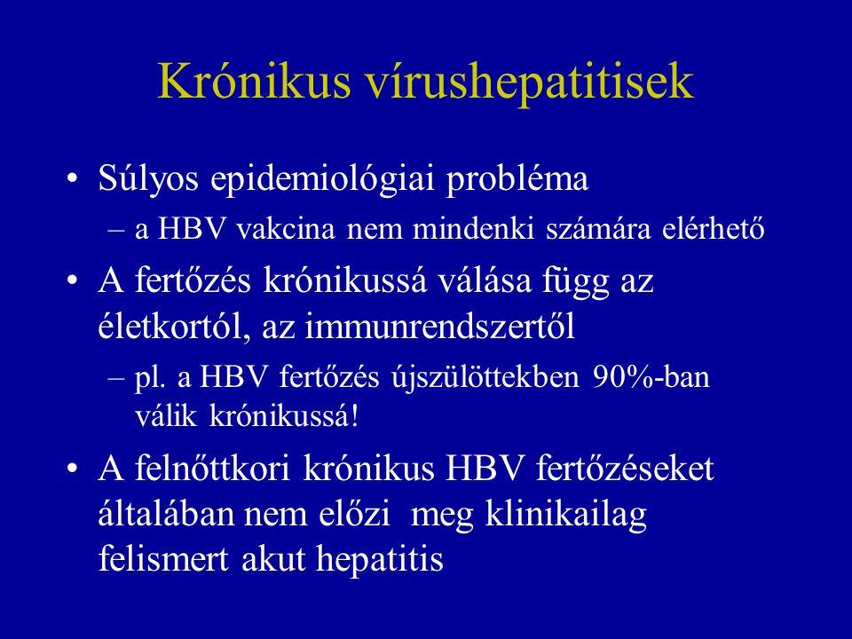 Krónikus vírushepatitisek Súlyos epidemiológiai probléma –a HBV vakcina nem mindenki számára elérhető A fertőzés krónikussá válása függ az életkortól, az immunrendszertől –pl.