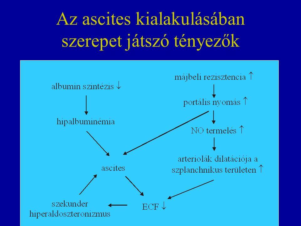Az ascites kialakulásában szerepet játszó tényezők