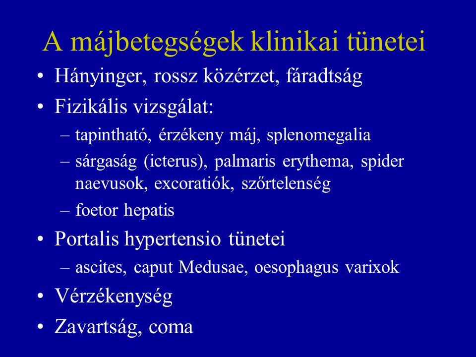 Hepaticus encephalopathia, májkóma A személyiség, az intellektus megváltozása Alvás/ébrenlét ciklus megfordulása Irritáció, dezorientáció, elkent beszéd Hányinger, hányás, gyengeség Foetor hepatis, asterixis Görcsök, coma