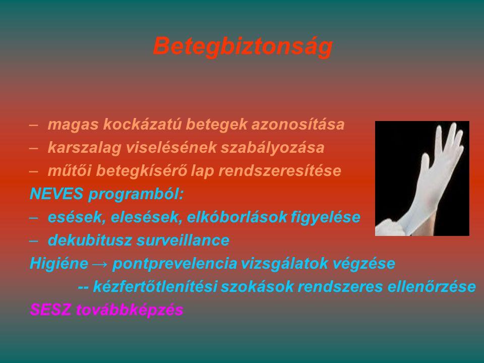 Betegbiztonság –magas kockázatú betegek azonosítása –karszalag viselésének szabályozása –műtői betegkísérő lap rendszeresítése NEVES programból: –esések, elesések, elkóborlások figyelése –dekubitusz surveillance Higiéne → pontprevelencia vizsgálatok végzése -- kézfertőtlenítési szokások rendszeres ellenőrzése SESZ továbbképzés