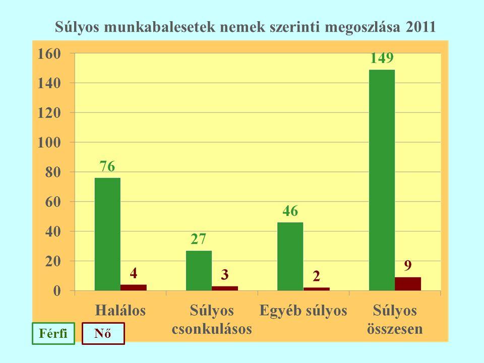 FérfiNő Súlyos munkabalesetek nemek szerinti megoszlása 2011