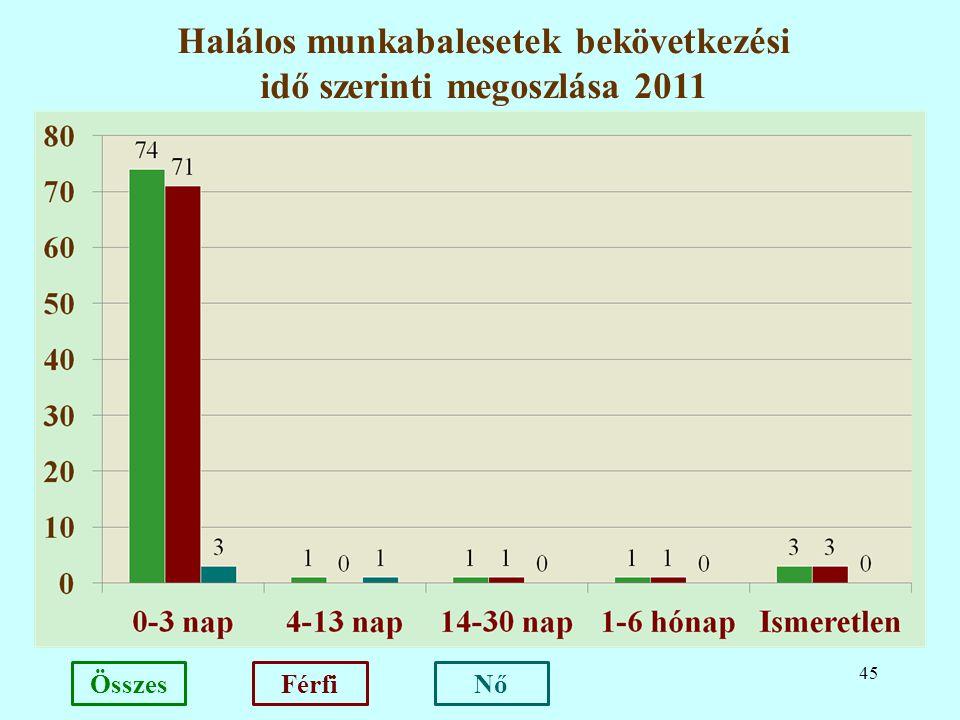 45 Halálos munkabalesetek bekövetkezési idő szerinti megoszlása 2011 NőFérfiÖsszes