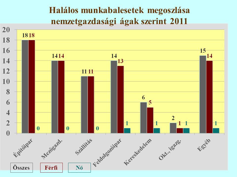 46 ÖsszesFérfiNő Halálos munkabalesetek megoszlása nemzetgazdasági ágak szerint 2011