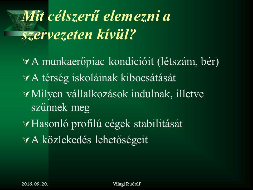 Világi Rudolf Mit célszerű elemezni a szervezeten belül.