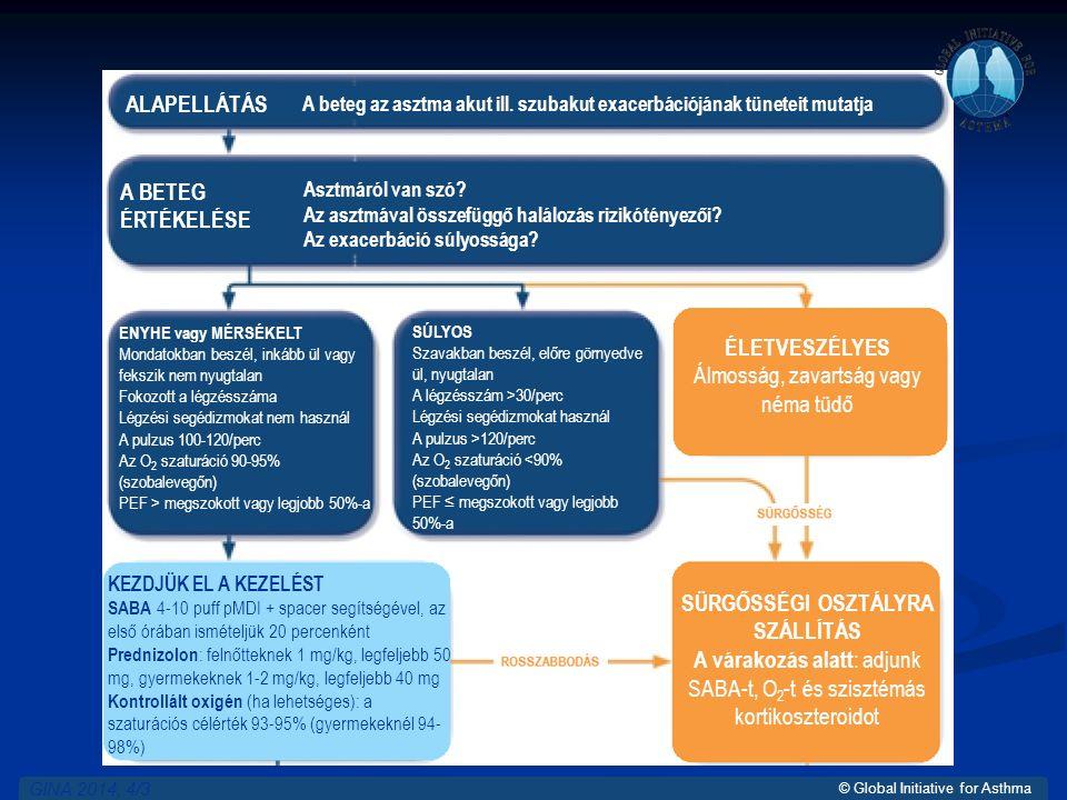 © Global Initiative for Asthma GINA 2014, 4/3 ALAPELLÁTÁS A BETEG ÉRTÉKELÉSE Asztmáról van szó.