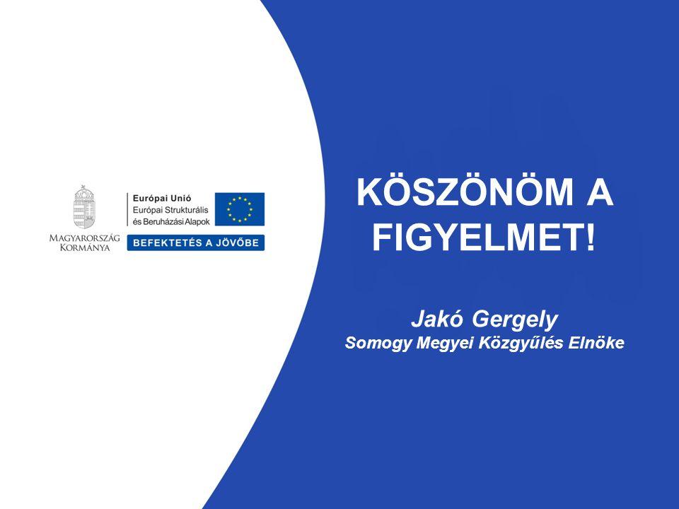KÖSZÖNÖM A FIGYELMET! Jakó Gergely Somogy Megyei Közgyűlés Elnöke